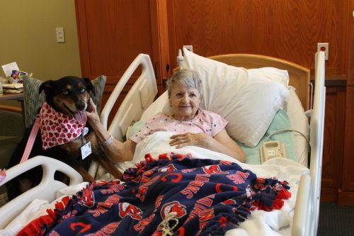 An hospice pet therapy dog visiting an elderly woman